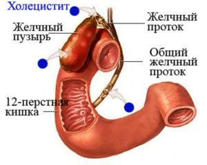 Почему боль в желудке отдает в позвоночник